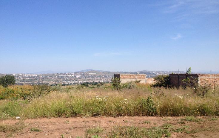 Foto de terreno habitacional en venta en  , el verde, el salto, jalisco, 1296171 No. 04