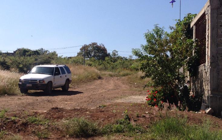 Foto de terreno habitacional en venta en  , el verde, el salto, jalisco, 1296171 No. 06