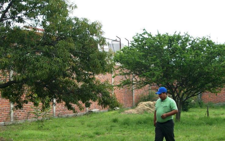 Foto de terreno habitacional en venta en  , el verde, el salto, jalisco, 1927901 No. 06