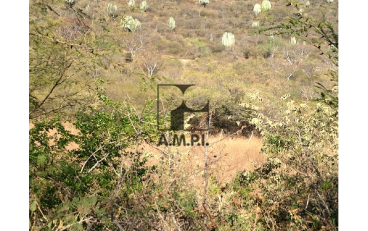 Foto de terreno habitacional en venta en, el vergel, ayala, morelos, 565477 no 05