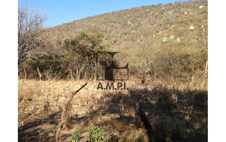 Foto de terreno habitacional en venta en, el vergel, ayala, morelos, 565477 no 07