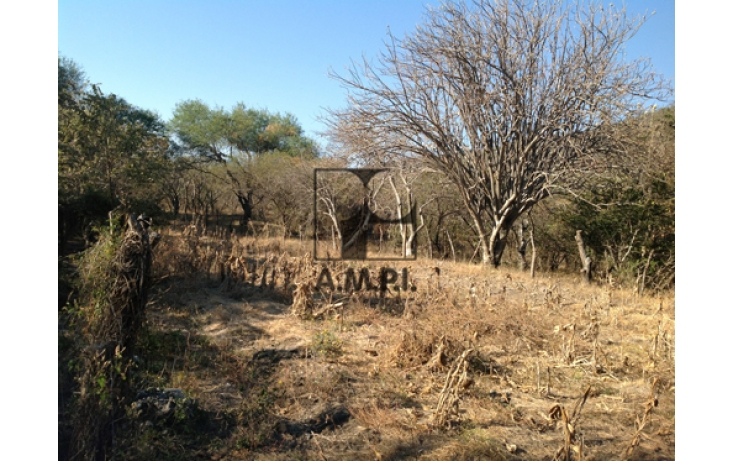 Foto de terreno habitacional en venta en, el vergel, ayala, morelos, 565477 no 09