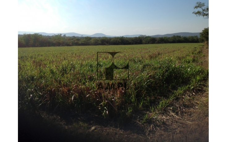 Foto de terreno habitacional en venta en, el vergel, ayala, morelos, 565478 no 04