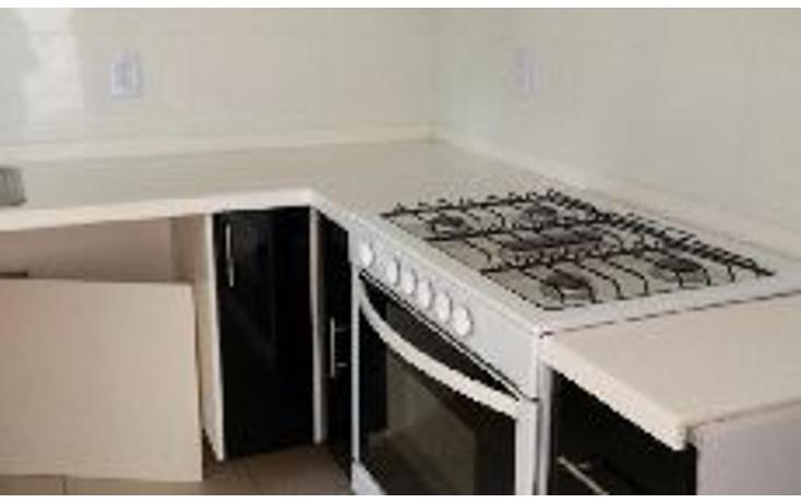 Foto de departamento en renta en  , el vergel, cuernavaca, morelos, 1292425 No. 18