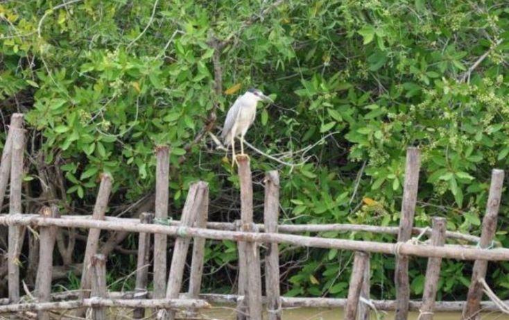 Foto de terreno comercial en venta en, el walamo, mazatlán, sinaloa, 1102425 no 21