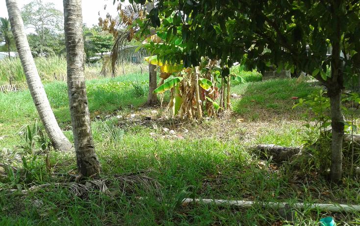 Foto de terreno habitacional en venta en  , el zapotal, centro, tabasco, 1241465 No. 08