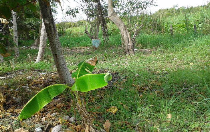Foto de terreno habitacional en venta en  , el zapotal, centro, tabasco, 1241465 No. 10