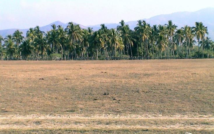 Foto de terreno comercial en venta en  , el zapote, coyuca de benítez, guerrero, 2015082 No. 04