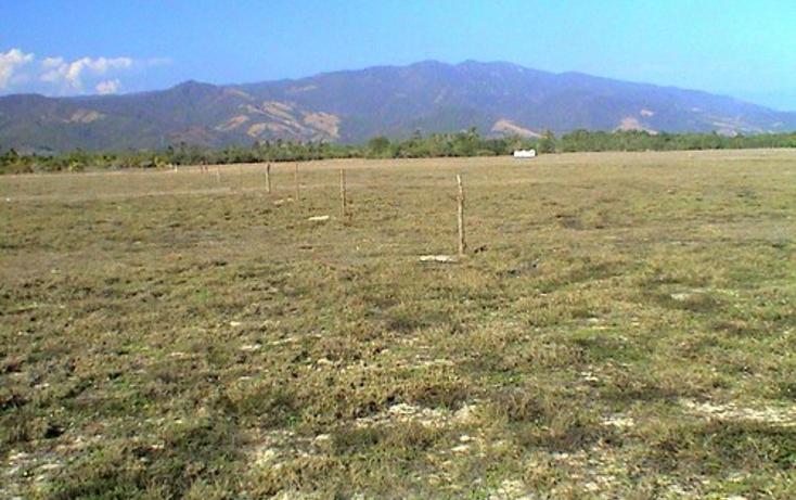 Foto de terreno comercial en venta en  , el zapote, coyuca de benítez, guerrero, 2015082 No. 06