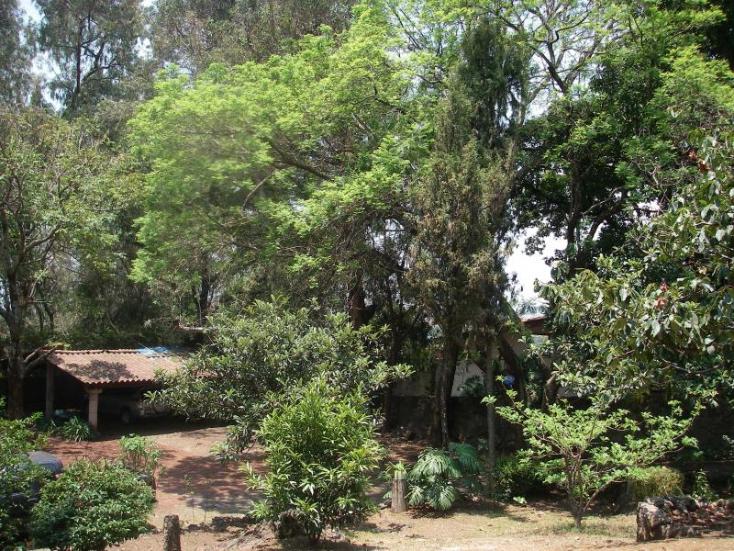 Foto de terreno habitacional en venta en  1, santa maría ahuacatitlán, cuernavaca, morelos, 220969 No. 03