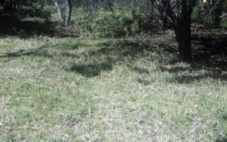 Foto de terreno habitacional en venta en emiliano zapata 16, santa rita tlahuapan, tlahuapan, puebla, 1712662 no 04