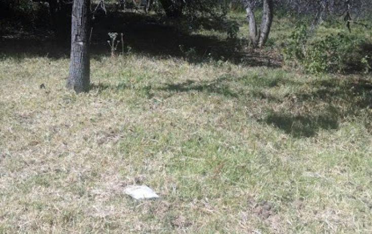 Foto de terreno habitacional en venta en emiliano zapata 16, santa rita tlahuapan, tlahuapan, puebla, 1712662 no 08
