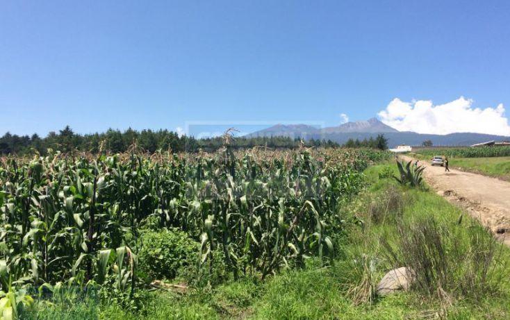 Foto de terreno habitacional en venta en emiliano zapata, cacalomacán centro, toluca, estado de méxico, 1656473 no 05
