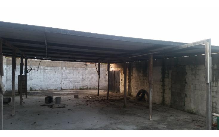 Foto de casa en venta en  , emiliano zapata, ciudad madero, tamaulipas, 1516196 No. 01
