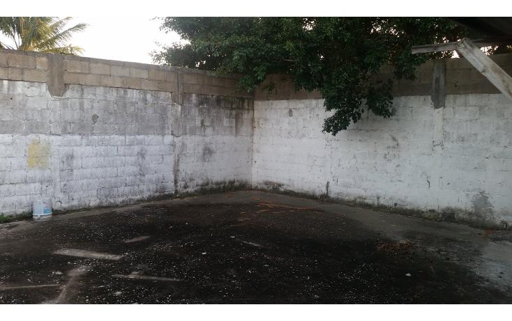 Foto de casa en venta en  , emiliano zapata, ciudad madero, tamaulipas, 1516196 No. 02