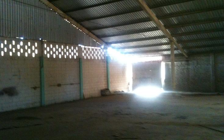 Foto de nave industrial en renta en  , emiliano zapata, culiacán, sinaloa, 1069175 No. 14