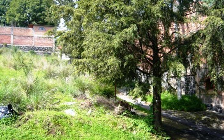 Foto de terreno comercial en venta en  , emiliano zapata, emiliano zapata, morelos, 1106711 No. 01