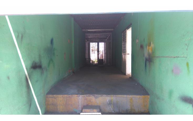 Foto de local en renta en  , emiliano zapata, la paz, baja california sur, 1066477 No. 02