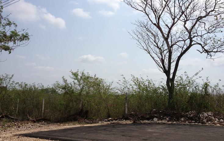 Foto de terreno comercial en venta en  , emiliano zapata sur, mérida, yucatán, 1183517 No. 01