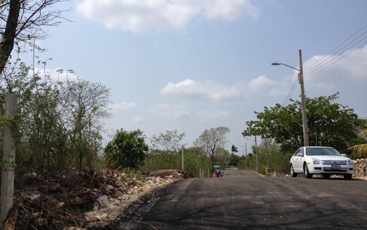 Foto de terreno comercial en venta en  , emiliano zapata sur, mérida, yucatán, 1183517 No. 02