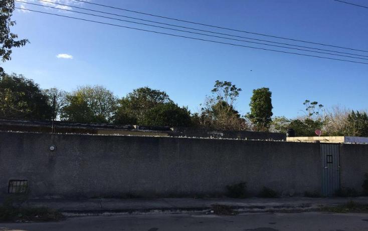 Foto de terreno habitacional en venta en  , emiliano zapata sur, mérida, yucatán, 1661680 No. 01