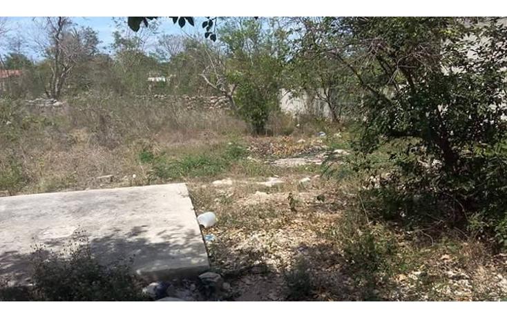 Foto de casa en venta en  , emiliano zapata sur, mérida, yucatán, 1760046 No. 06