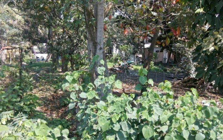 Foto de terreno habitacional en venta en emiliano zapata, universitaria, tuxpan, veracruz, 1711522 no 02