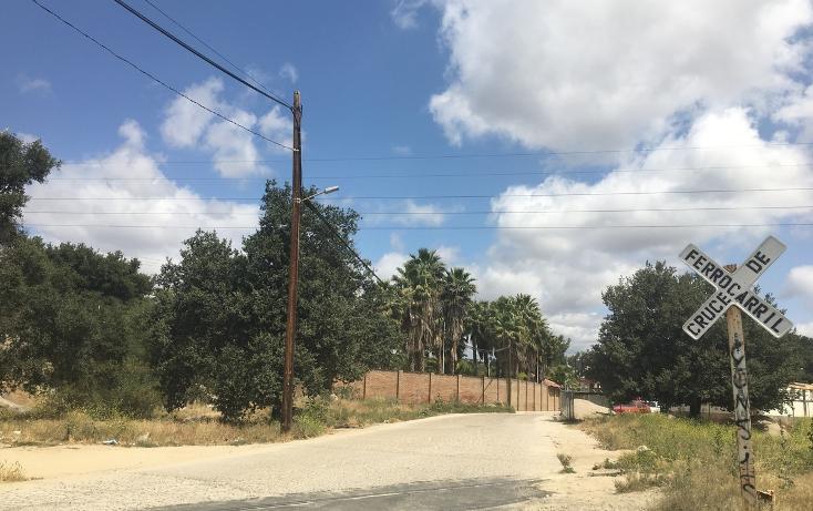 Foto de terreno habitacional en venta en  , encanto sur, tecate, baja california, 1949743 No. 04