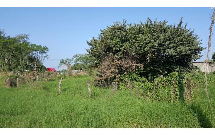 Foto de terreno habitacional en venta en  , encinal y mesa, ozuluama de mascareñas, veracruz de ignacio de la llave, 1553460 No. 03