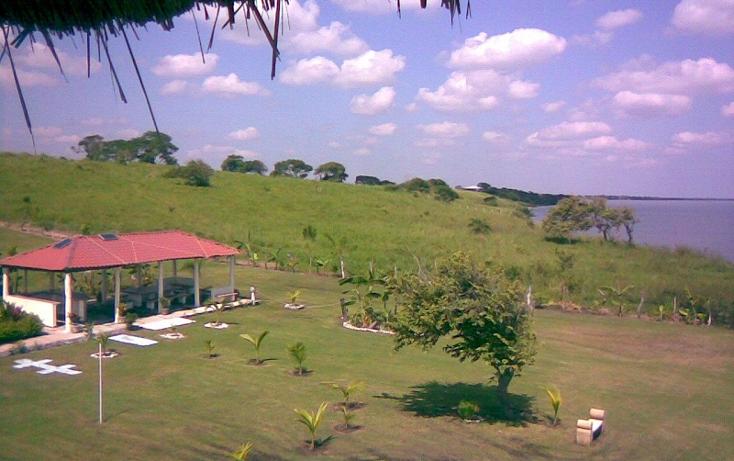 Foto de terreno habitacional en venta en  , encinal y mesa, ozuluama de mascareñas, veracruz de ignacio de la llave, 1553486 No. 02