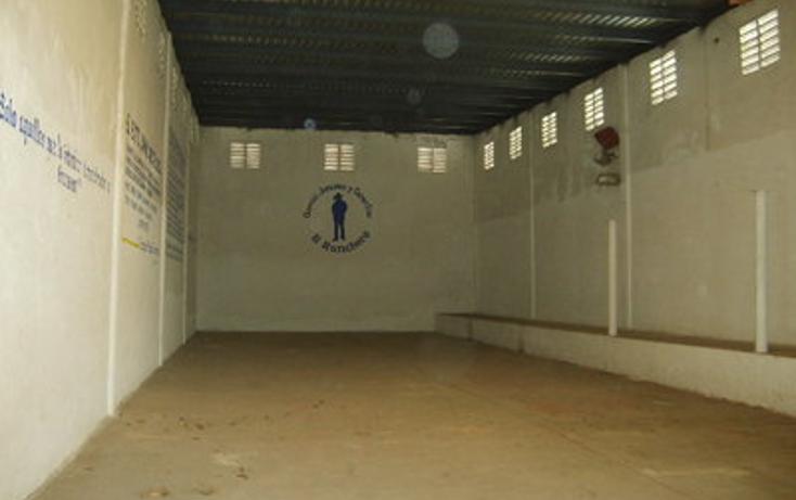 Foto de bodega en renta en  , enrique c rebsamen, veracruz, veracruz de ignacio de la llave, 1737200 No. 02