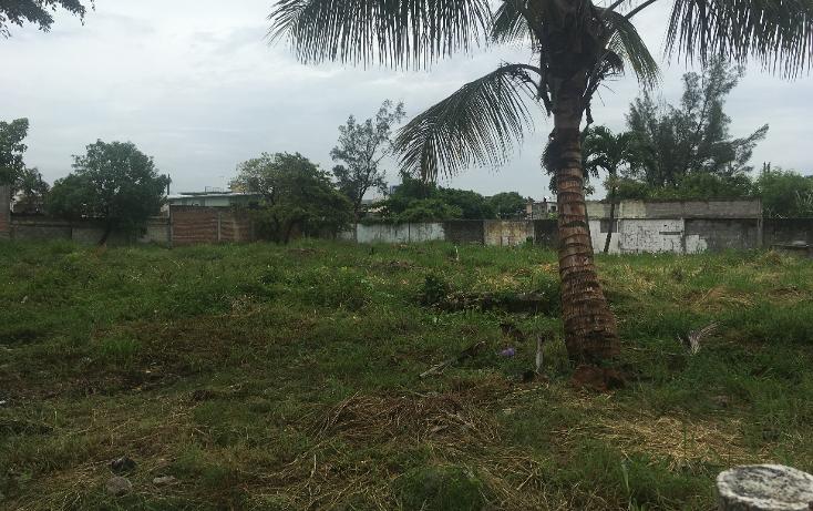 Foto de terreno habitacional en venta en  , enrique c rebsamen, veracruz, veracruz de ignacio de la llave, 2035604 No. 03