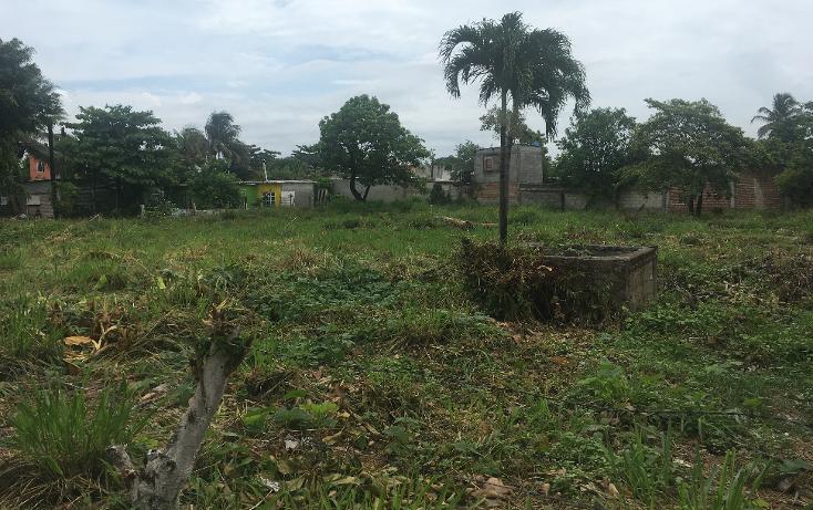 Foto de terreno habitacional en venta en  , enrique c rebsamen, veracruz, veracruz de ignacio de la llave, 2035604 No. 06