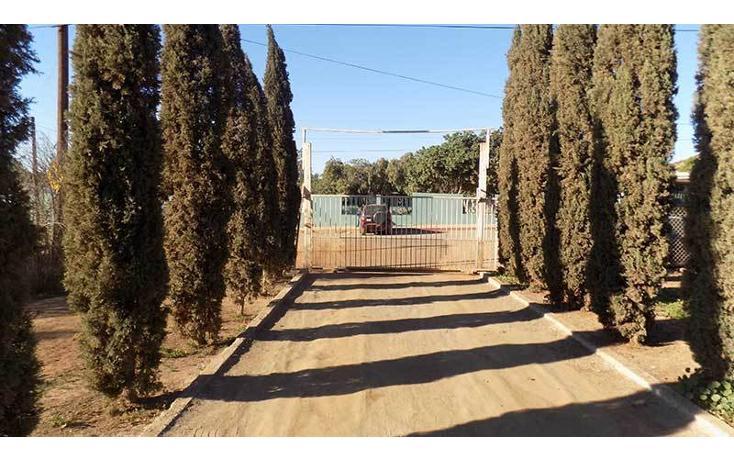 Foto de casa en venta en  , ensenada centro, ensenada, baja california, 1414699 No. 13