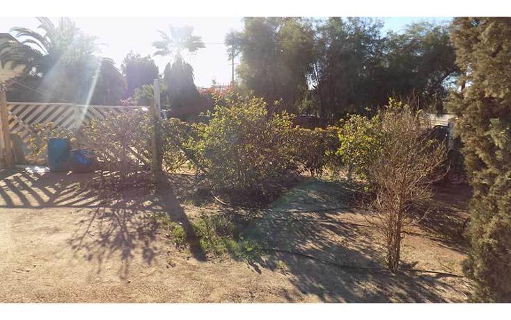 Foto de casa en venta en  , ensenada centro, ensenada, baja california, 1414699 No. 16