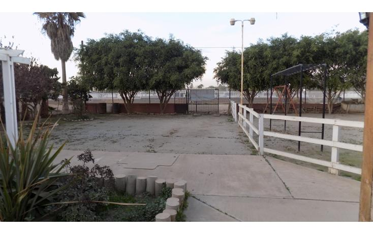 Foto de local en venta en  , ensenada centro, ensenada, baja california, 737697 No. 06