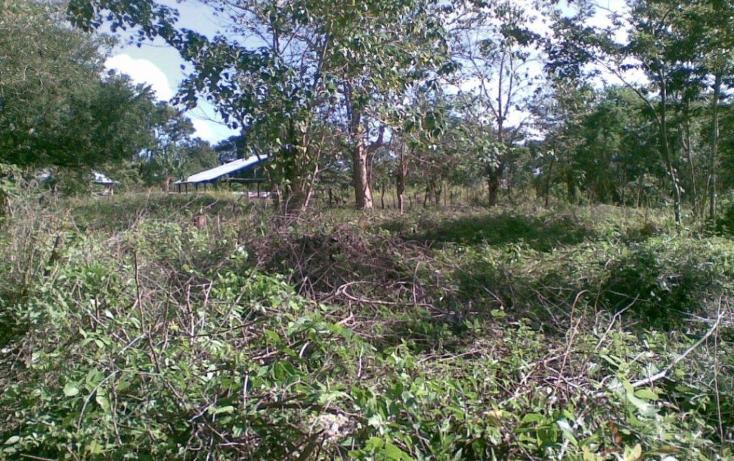 Foto de terreno habitacional en venta en  , escárcega centro, escárcega, campeche, 1199957 No. 05