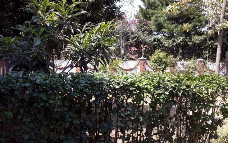 Foto de casa en renta en escondida, barrio santa catarina, coyoacán, df, 1942857 no 03