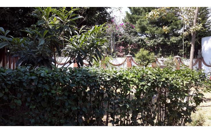 Foto de casa en renta en escondida , barrio santa catarina, coyoacán, distrito federal, 1942857 No. 03