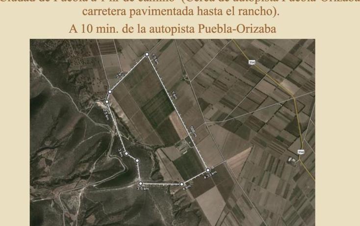 Foto de terreno comercial en venta en  , esperanza, esperanza, puebla, 1000185 No. 03