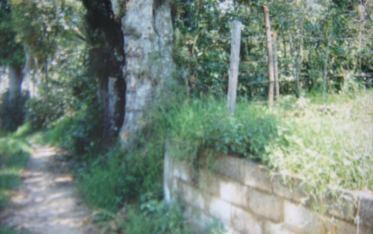 Foto de terreno habitacional en venta en  , espinal bajo, coatepec, veracruz de ignacio de la llave, 1272423 No. 03