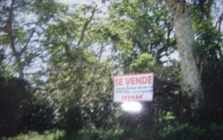 Foto de terreno habitacional en venta en  , espinal bajo, coatepec, veracruz de ignacio de la llave, 1272423 No. 05