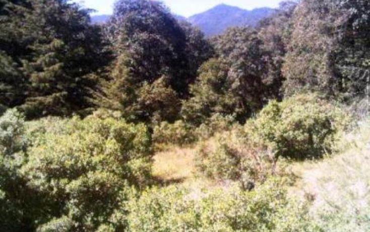 Foto de terreno habitacional en venta en espiritu santo iii parte de la nuez, espíritu santo, jilotzingo, estado de méxico, 387555 no 06