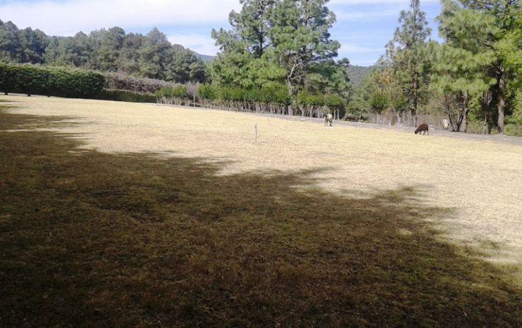 Foto de terreno habitacional en venta en, espíritu santo, jilotzingo, estado de méxico, 1640352 no 05