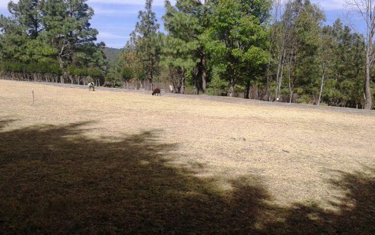 Foto de terreno habitacional en venta en, espíritu santo, jilotzingo, estado de méxico, 1640352 no 07