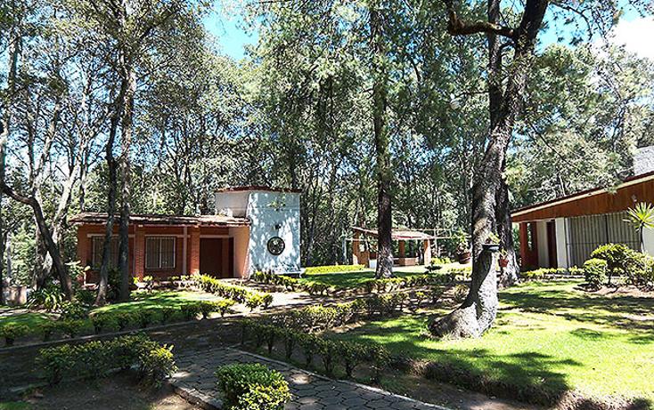 Foto de casa en venta en  , espíritu santo, jilotzingo, méxico, 1054147 No. 13
