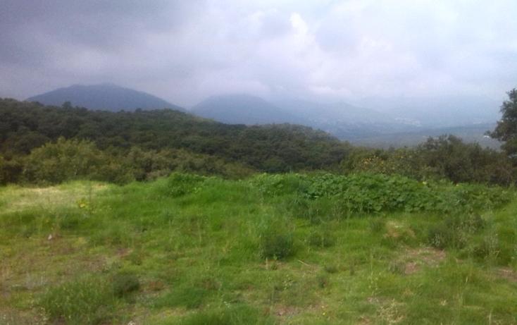 Foto de terreno habitacional en venta en  , espíritu santo, jilotzingo, méxico, 1227941 No. 01