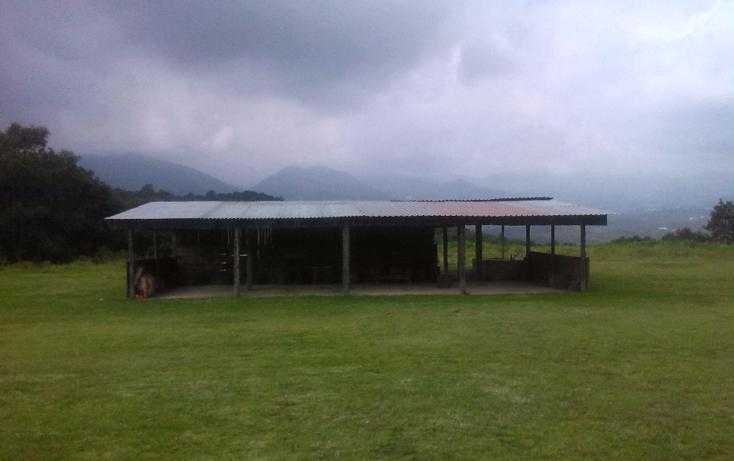 Foto de terreno habitacional en venta en  , espíritu santo, jilotzingo, méxico, 1227941 No. 03