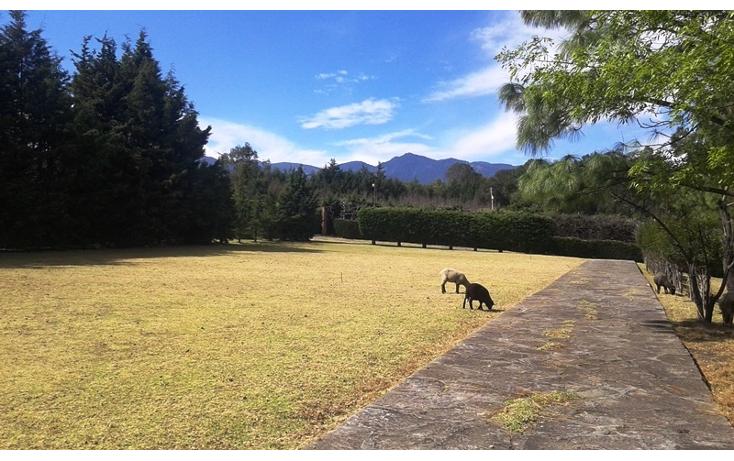 Foto de terreno habitacional en venta en  , esp?ritu santo, jilotzingo, m?xico, 1835482 No. 01