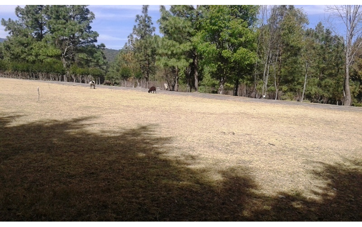Foto de terreno habitacional en venta en  , esp?ritu santo, jilotzingo, m?xico, 1835482 No. 06